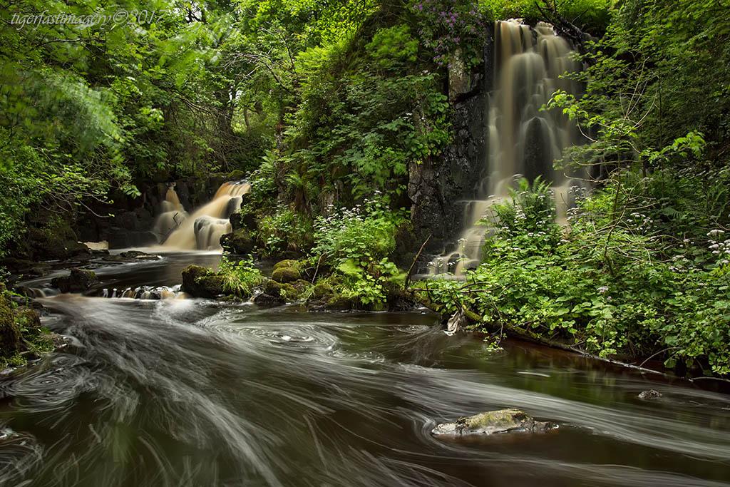 scotland/5DRF3616.jpg