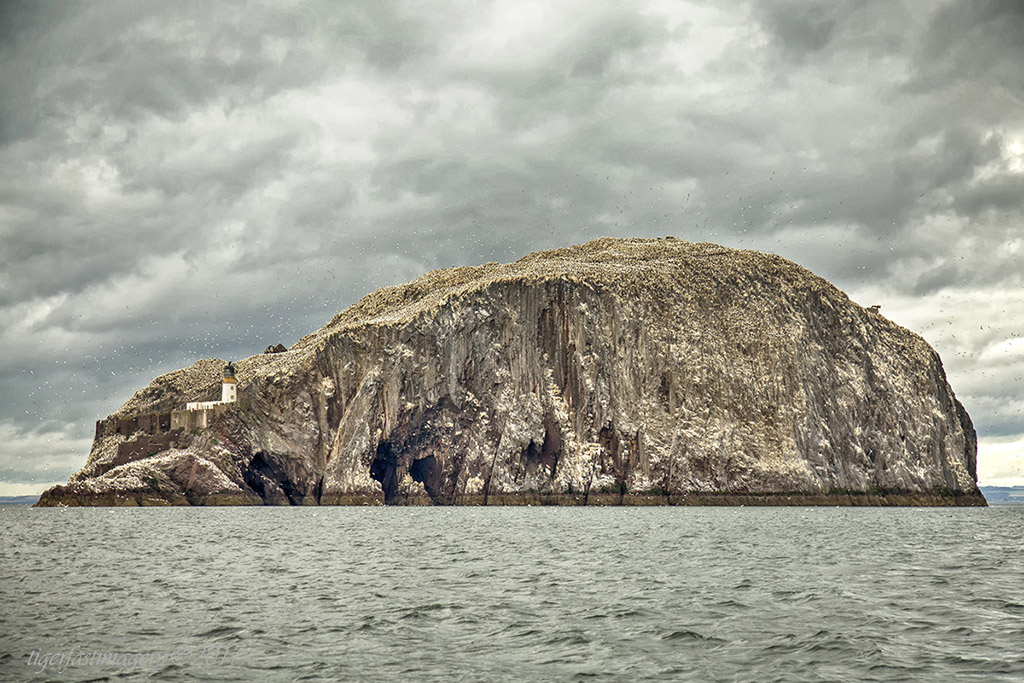 scotland/5DRF5732.jpg