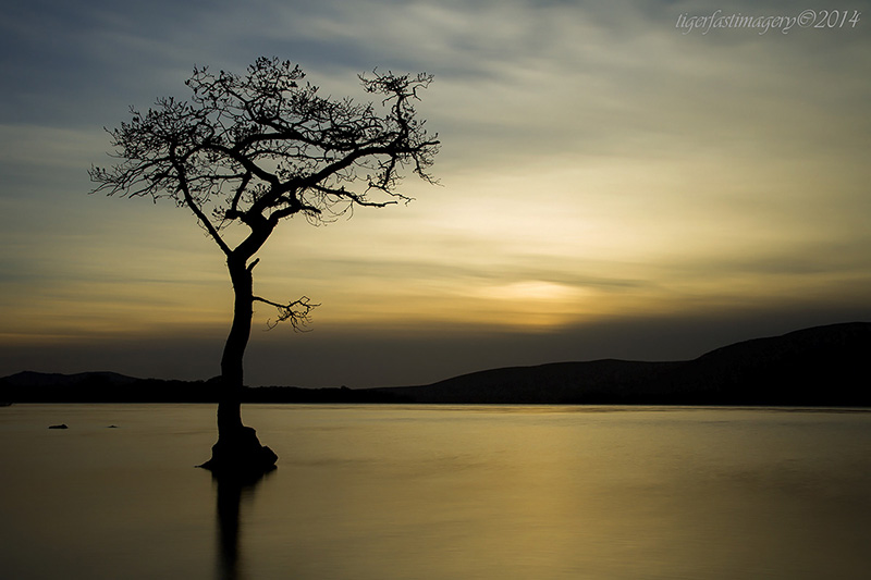 scotland/7DRF8315.jpg